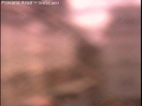 Arad Webcam, Arad City Hall